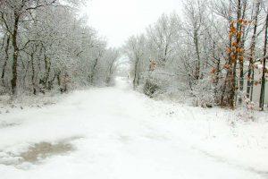 La cañada nevada